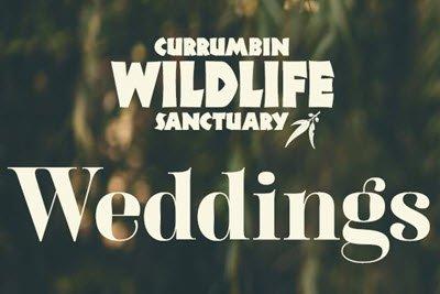 Currumbin Wildlife Sanctuary -www.beautifulgemsjewellery.com.au